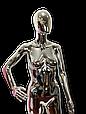 Манекен женский серебро, фото 4