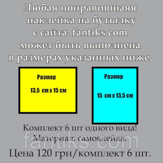 Комплект из 6 штук одного вида любой наклейки с сайта увеличенного размера:15 см х 13,5 см