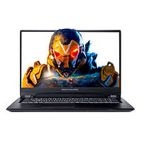 Ноутбук Dream Machines RS2070Q-17 (RS2070Q-17UA27) Black (RS2070Q-17UA27)