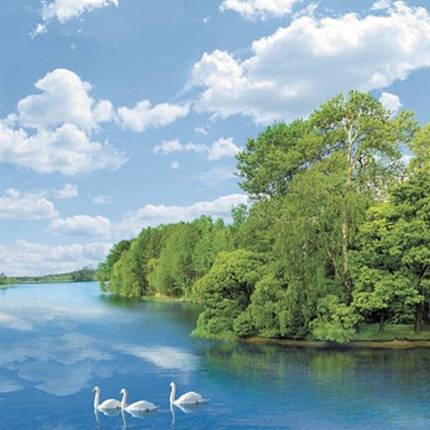 Фотообои,  река, лес,  Утренняя песня, 20 листов, 196х350см, фото 2
