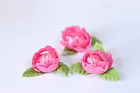Мини-пиончики 10 шт/уп. диаметр около 1-1.5 см, розового цвета