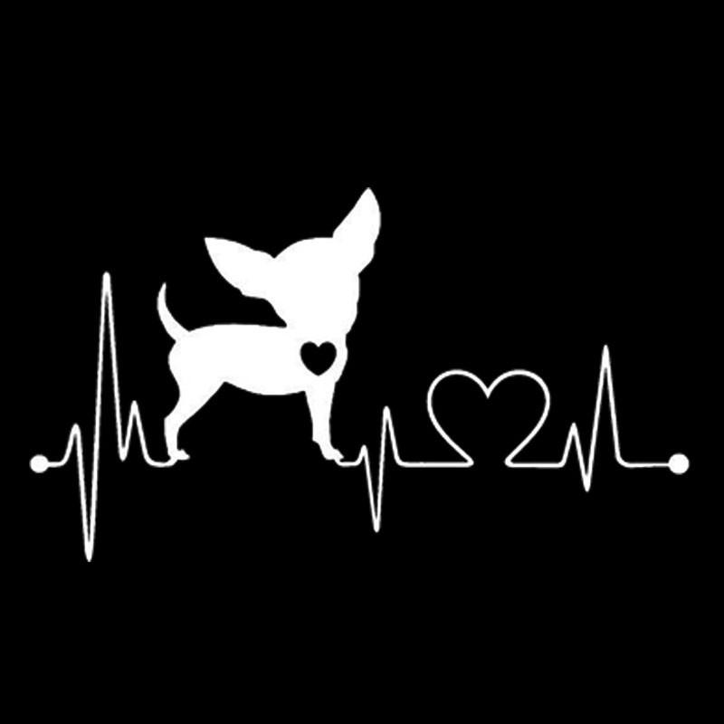 Наклейка - Chihuahua чихуахуа белые, фото 1