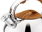Чайник со свистком из нержавеющей стали Benson BN-703 3 л | Нейлоновая ручка | Индукция, фото 2
