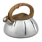 Чайник со свистком из нержавеющей стали Benson BN-704 3 л | Нейлоновая ручка | Индукция, фото 7