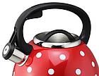 Чайник со свистком из нержавеющей стали Benson BN-706 3 л | Нейлоновая ручка | Индукция, фото 6