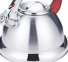 Чайник со свистком из нержавеющей стали Benson BN-710 3 л | Нейлоновая ручка | Индукция, фото 7