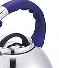 Чайник со свистком из нержавеющей стали Benson BN-711 3 л | Нейлоновая ручка | Индукция, фото 4