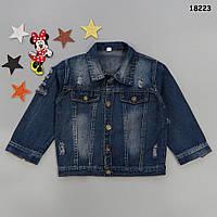 Джинсовый пиджак унисекс. 110, 120 см