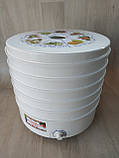 Сушарка електрична для фруктів овочів і грибів РОТОР / ДІВА / ЧУДЕСНИЦА сушарка 25 літрів, фото 2