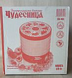 Сушарка електрична для фруктів овочів і грибів РОТОР / ДІВА / ЧУДЕСНИЦА сушарка 25 літрів, фото 4