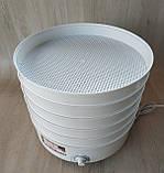 Сушарка електрична для фруктів овочів і грибів РОТОР / ДІВА / ЧУДЕСНИЦА сушарка 25 літрів, фото 5