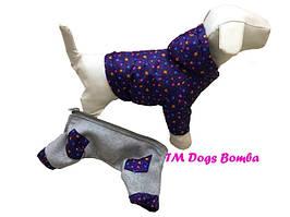 Комбинезон-трансформер для собак, фиолетовый