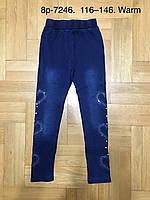 Лосины утепленные для девочек под джинс оптом , размеры 116-146 см, Glass Bear, 95% хлопок, арт. 8р-7246, фото 1