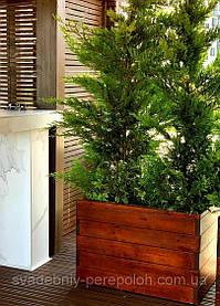 Деревянный вазон на террасу для туи, кипариса, самшита и др