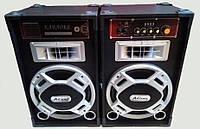 Акустическая система Ailiang USBFM-298D-DT