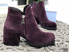 Замшевые ботинки, фото 3