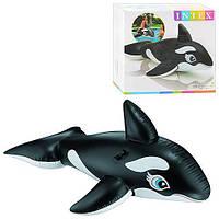 Надувная игрушка-касатка для детских забав Интекс 58561, из износоустойчивого ПВХ, имеет 2 держателя