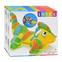 Плотик-игрушка надувная Игуана 56569, с ручками/держателями, углубление-сидение, с 3-хлетнего возраста