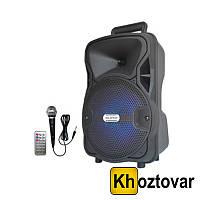 Портативная акустическая система Ailiang LIGE-A810K-DT BT с радиомикрофоном