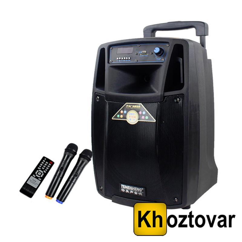 Портативная акустическая система с АКБ Temeisheng SL10-01 BT