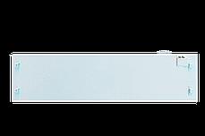 Инфракрасный обогреватель UDEN-300, фото 2