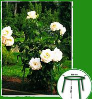 Садовая опора малая для цветов, подставка для цветов, фото 1