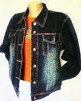 Куртки женские джинсовые (под Mango), р.50,52,54,56,58