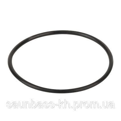 Уплотнительное кольцо диффузора Emaux (02011004)