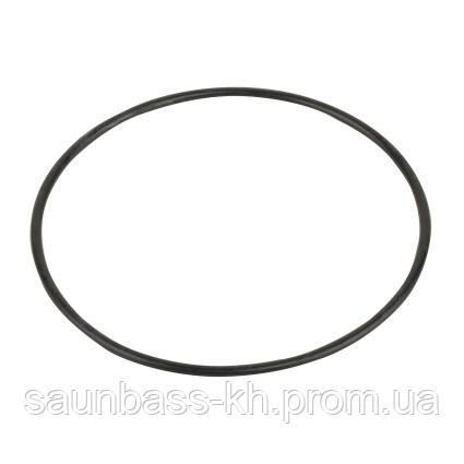 Резиновая прокладка под крышку насоса Emaux SC(02021088new/02011077)