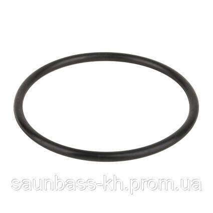Уплотнительное кольцо Emaux фильтра HD 2011013