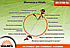 Четырехтактная мотокоса Vitals BK 3108-4o (1,09 л.с.), фото 3