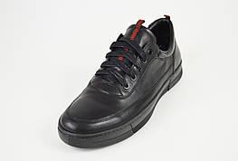 Кроссовки черные кожаные Kadar 3635253