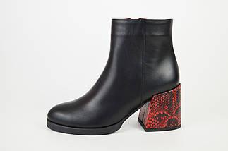 Ботинки демисезонные на каблуке рептилия красные Kluchini 13099, фото 2