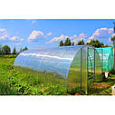 "Теплица""Вишневый сад"" 3,5х6х2м (Турция), труба 40х20 - оцинковка + поликарбонат 4мм, фото 3"