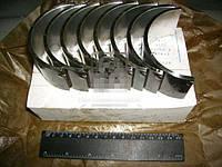 Вкладыши шатунные Р1 Д 40/48/65 АО20-1 (ЗПС, г.Тамбов). А23.01-81-65сб