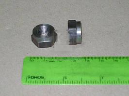 Гайка болта клапана регулировочная ВАЗ 2101-2107 (АвтоВАЗ). 21010-100707600