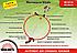 Бензиновая мотокоса Vitals Master BK 4917r (2,24 л.с.), фото 3