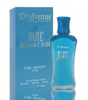 Туалетная вода 10th Avenue Blue Mountain edt 100ml