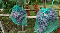 Защитные мешочки для гроздей винограда 31х55 (до 2 кг), 50 шт