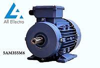 Электродвигатель 5АМ355М6 200 кВт 1000 об/мин, 380/660В