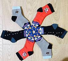 Носки детские зимние махровые хлопок Житомир ТМ Premium размер 16-18(26-28) ассорти