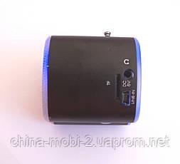 Портативная MP3 USB колонка, FM радио, AS-2012 MP3/SD/USB/AUX/FM, фото 3