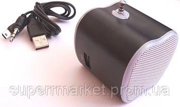 Портативная MP3 USB колонка, FM радио, AS-2012 MP3 SD USB AUX FM, фото 2