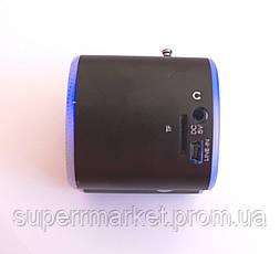 Портативная MP3 USB колонка, FM радио, AS-2012 MP3 SD USB AUX FM, фото 3