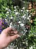 Цветы искусственные для декора кашка ( ветка 26 см )