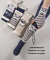 Комплект (колготки+повязка) для девочек TM Katamino оптом, Турция р.3-4 (98-104 см), фото 1