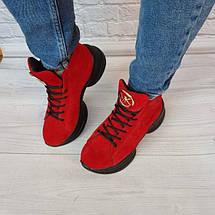 Жіночі замшеві черевики в спортивному стилі 36-40 р, фото 3