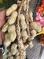 Вязка арахис искусственный, орех ( ветка 50 см ), фото 1