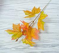 Листья клена осенние- желтые, фото 1