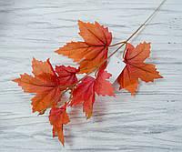 Листья клена осенние- орнжевые, фото 1